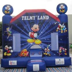 Telmy Land